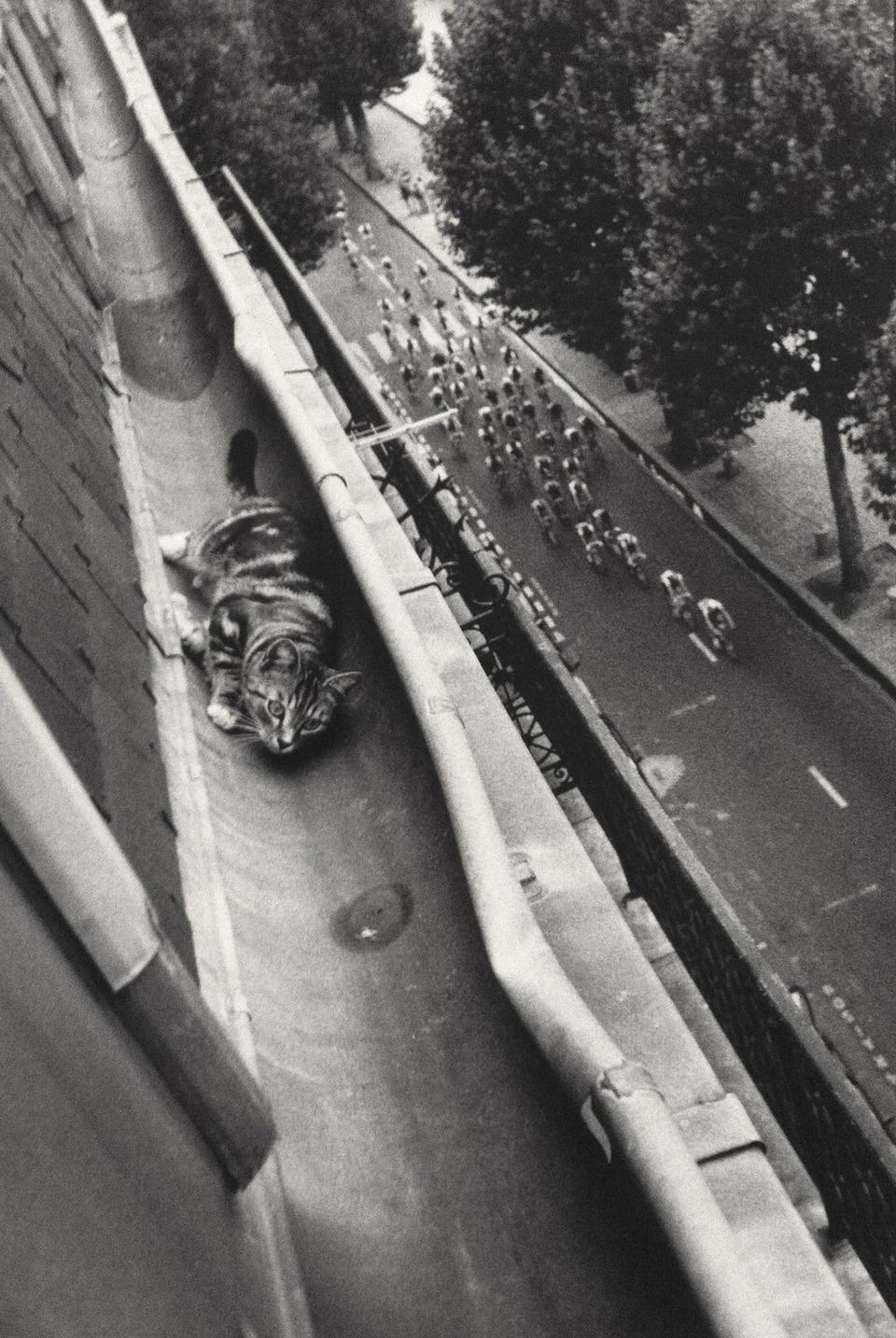 «Давай, Вергилий!» Велосипедный тур в Париже, 1989. Необычный ракурс. Фотограф Мари Бабей