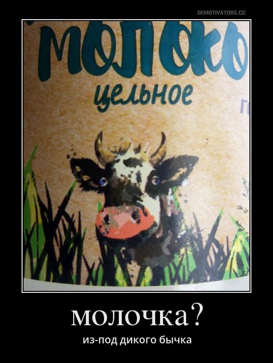 Демотиватор про молоко сами